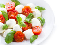 Salad with mozzarella Stock Photography