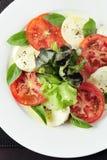 Salad with mozzarella Stock Images