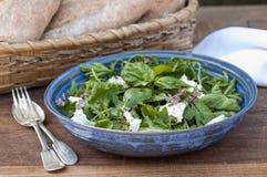 Salad with mozzarella  and basil Royalty Free Stock Photo