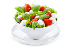 Salad with mozzarella, basil and tomatoes Stock Images