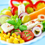 Salad with mozzarella and chili flakes Royalty Free Stock Image