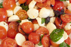 Salad. With mozzarella and tomatoes Stock Images