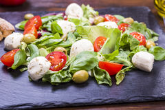 Salad with mozzarella and tomatoes Royalty Free Stock Image