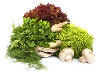 Salad and mushrooms Stock Photo