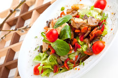 Salad with mushrooms and chicken royalty free stock images