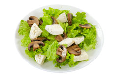 Salad mushrooms with mozzarella on the plate Royalty Free Stock Photo