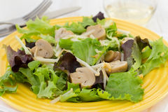 Salad with mushrooms on yellow plate Stock Images