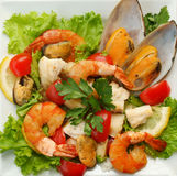 Salad from a mussel. With fish and vegetables Royalty Free Stock Photos