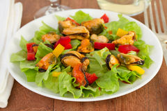 Salad with mussels Stock Photos