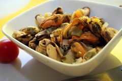 Salad of mussels Royalty Free Stock Photos
