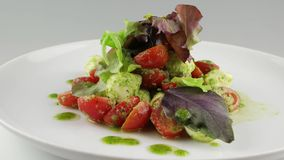 Salad Neapolitano with cherry tomatoes and mozzarella stock footage