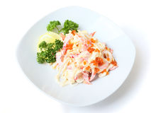 Salad Nemo with shadow Royalty Free Stock Images