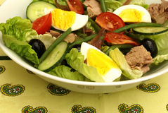 Salad Nicoise Royalty Free Stock Photos