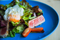 Salad Nicoise on a blue plate with poached egg. Salad Nicoise with tuna fish, boiled eggs, tomatoes, iceberg Royalty Free Stock Photo