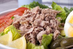Salad Nicoise Close Up Stock Images