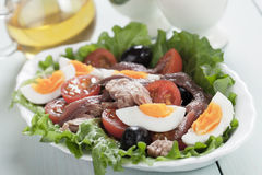 Salad Nicoise with eggs and tuna Stock Photography