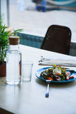 Salad Nicoise on table with bottle of water. Salad Nicoise with tuna fish, boiled eggs, tomatoes, iceberg, on the table with bottle of water Royalty Free Stock Photos