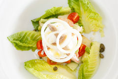 Salad Nicoise. With tomato, green beans, potato, egg, olives, letuce, tuna fish with a light French dressing royalty free stock photography