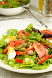 Salad Nicoise. With tomatoes, green beans, tuna, eggs and anchovies dressed with vinaigrette Stock Images