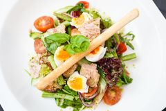 Salad nicoise with tuna Royalty Free Stock Photo