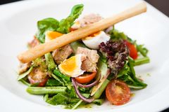 Salad nicoise with tuna Stock Images