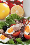Salad Nicoise with tuna and bolied eggs Royalty Free Stock Photo