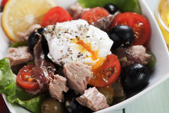 Salad Nicoise with tuna and poached egg Stock Images