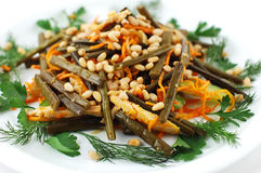 Salad with nuts Stock Images