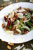 Salad with nuts Stock Photography