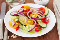 Salad with nuts Royalty Free Stock Photo