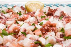 The salad octopus. With lemon oil and parsley Stock Image