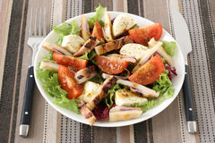 Salad with octopus and cheese mozzarella Stock Image