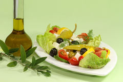 Salad with olive oil Royalty Free Stock Image