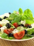 Salad with olives Stock Images