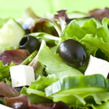 Salad with olives Royalty Free Stock Images