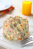Salad Olivier Royalty Free Stock Photos