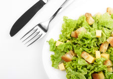 Salad On White Plate Stock Photos