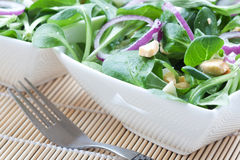 Salad with onion and egg Stock Image