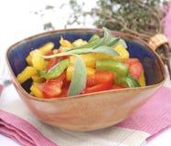 Salad of paprika Stock Photography
