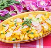 Salad of paprika and radish Stock Images