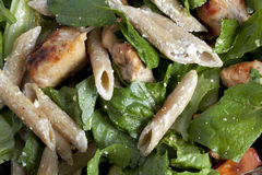 Salad with pasta penne and chicken Royalty Free Stock Photos