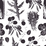 Salad pattern Royalty Free Stock Images