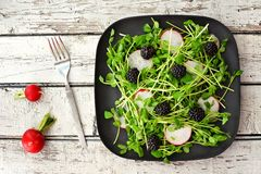 Salad with pea shoots, radishes, blackberries on black plate Royalty Free Stock Photography