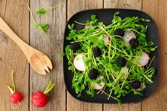 Salad with pea shoots, radishes, blackberries on black plate Royalty Free Stock Photos