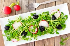 Salad with pea shoots, radishes, blackberries on rustic wood Royalty Free Stock Photo