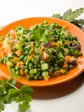 Salad with peas carrots and onions Royalty Free Stock Photography