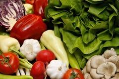 Salad, pepper, tomato, garlic. Colorful fresh vegetables like salad (Lactuca sativa convar. capitata), pepper (Capiscum annuum), tomato (Lycopersicon esculentum royalty free stock photo
