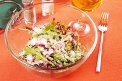 Salad with peppery arugula and grass radiccio Royalty Free Stock Photos
