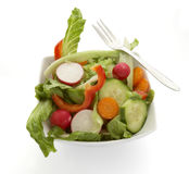 Salad plate 1 Royalty Free Stock Images
