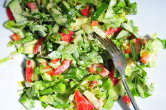 Salad on plate Stock Image